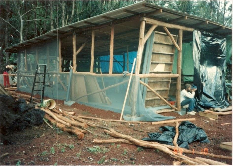 Bellyacres kitchen 1989